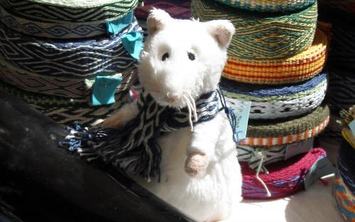 Mittelalte Ratte